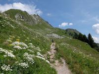 Les Rochers de la Naye. Wandergruppe (W)