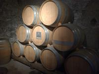 Keller des Schloss Chillon