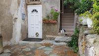 Korsika, Cap Corse, Erbalunga