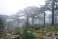 Wanderung am Col de Bavella