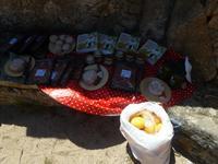 Korsisches Picknick