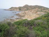 An Korsikas Westküste