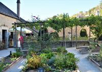 Da Vincis Hausgarten