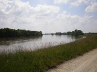 Die wilde Loire