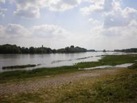 Wilde Loire