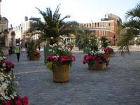 Blumendekoration Orleans