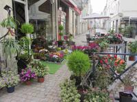 Blumenhändler in Saumur