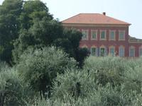 Matissemuseum, Nizza
