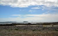 Guernsey30