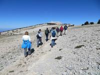 Wandern auf den Mont Ventoux