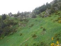 Wanderung Vall del Riu - Wanderweg