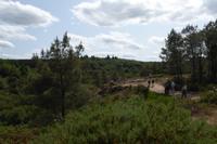 3.Tag, Wanderung im Wald von Brocéliande