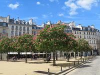 Place de Dauphin