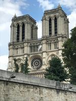 Notre Dame - ganz erhaben vom Schiff aus
