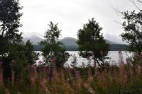 1663 Blick vom Loch Morlich in die Cairngorm Mountains