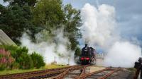 159 Strathspey Railway, Broomhill