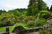 357 Skye, Armadale Castle & Garden