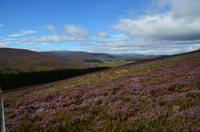135 Cairngorm Mountains bei Corgarff Castle