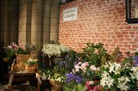 Flower Show in Chichester Cathedral 2012
