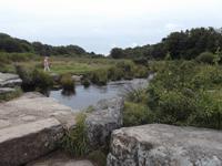 Fluss Dart im Dartmoor