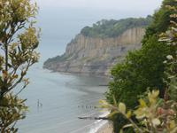 Isle of Wight - Shanklin