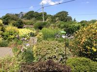 Garten in Godshill