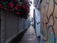 In den Lanes von Brighton