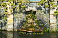 239 Bodnant Garden