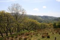 Zugfahrt in Wales