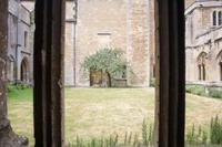 086 – Lacock Abbey