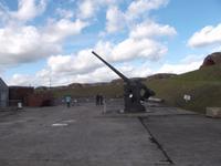 Artilleriefort Nelson, Waffensammlung