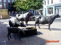 Den Jerseykühen ein Denkmal