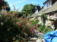 wunderschöner Garten auf Sark