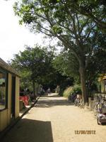 Die Hauptstraße auf Sark