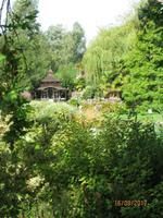 Im Japanischen Garten von Samares Manor Garden