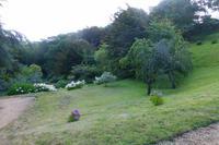 Gartentour