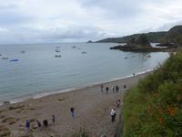 Gäste beim Muschelsuchen - Jersey Inselrundfahrt 1