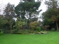 Privatgarten von Mr. Miles