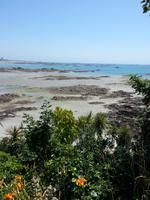 Das Felsenwatt vor Jerseys Südküste