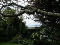 Blick vom Garten auf`s Meer