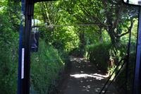 Green Lane
