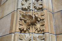 Kathedrale des Wissens