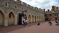 20170710_150849 Windsor Castle