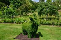 113 Heather Castle and Garden