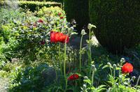 136 Sissinghurst Place and Garden