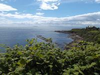 Blick zum Fischerhafen von Crail
