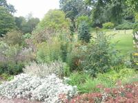 013__Killerton House & Gardens
