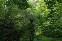 Wanderung vom Grosnez Castle bis Devils Hole