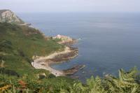 Nordküste Jersey