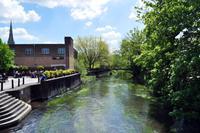 Avon in Salisbury